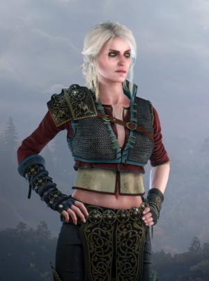 The Witcher 3- Wild Hunt 시리 DLC 복장.png